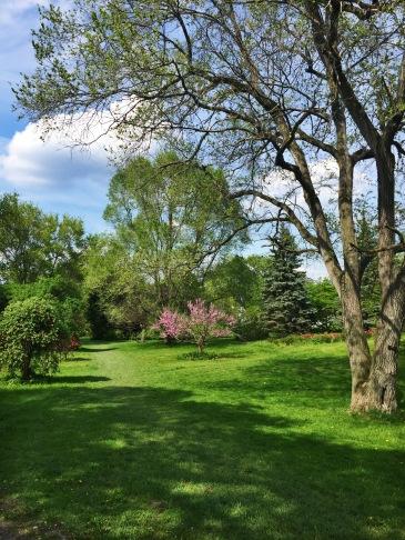 Ottawa Arboretum